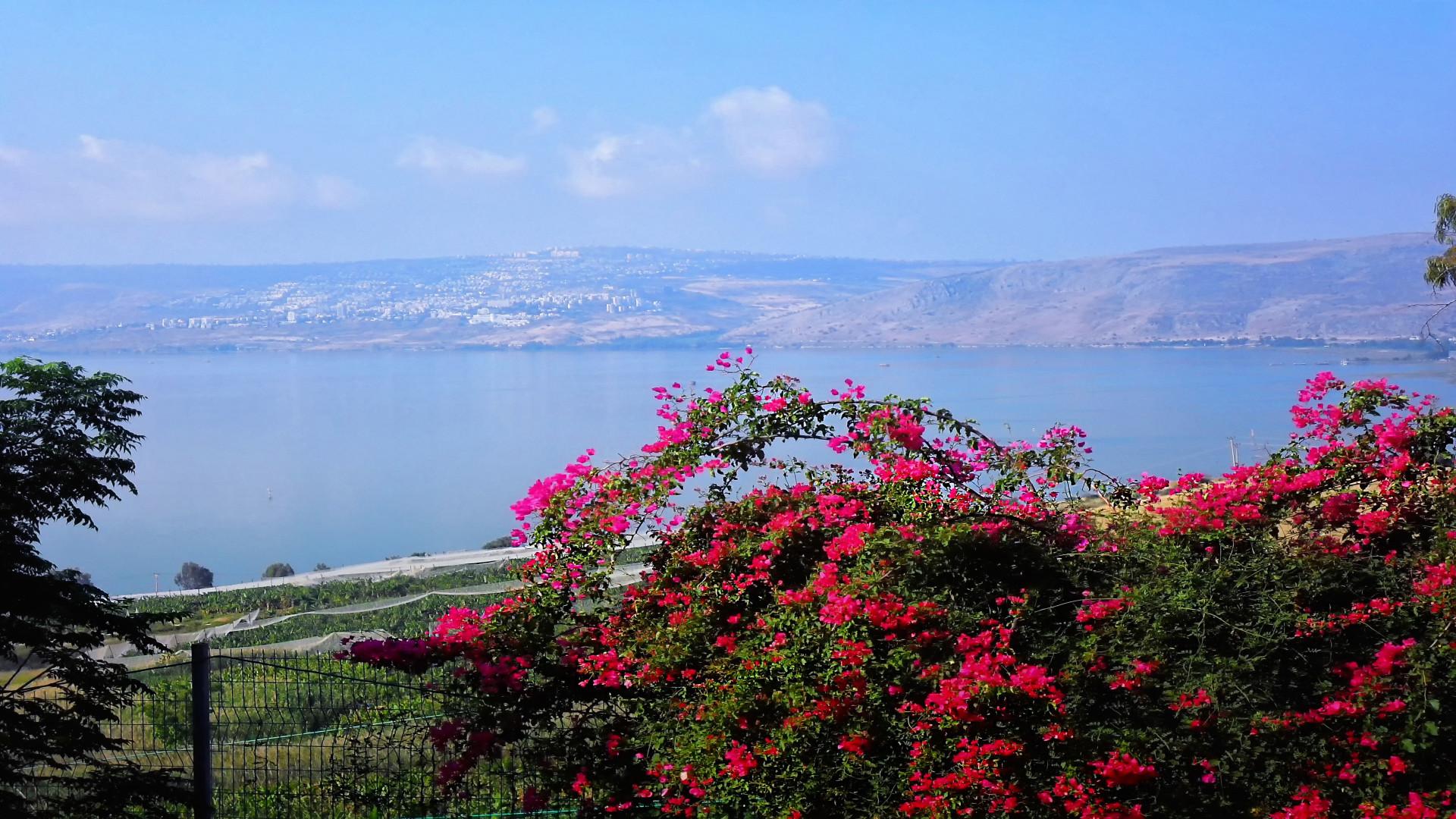 Prachtig uitzicht op het Meer van Galilea, Tiberias, Berg der Zaligheid, De Bergrede, Israël