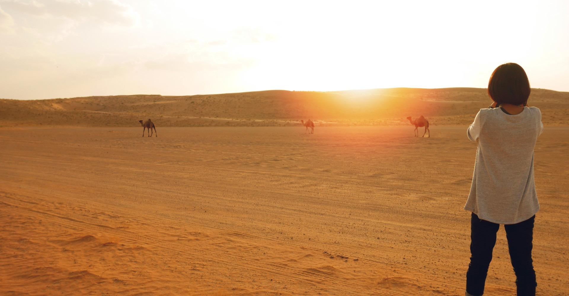 Vrouw in woestijn met kamelen op de achtergrond tijdens zonsondergang, Wahiba Sands, Oman