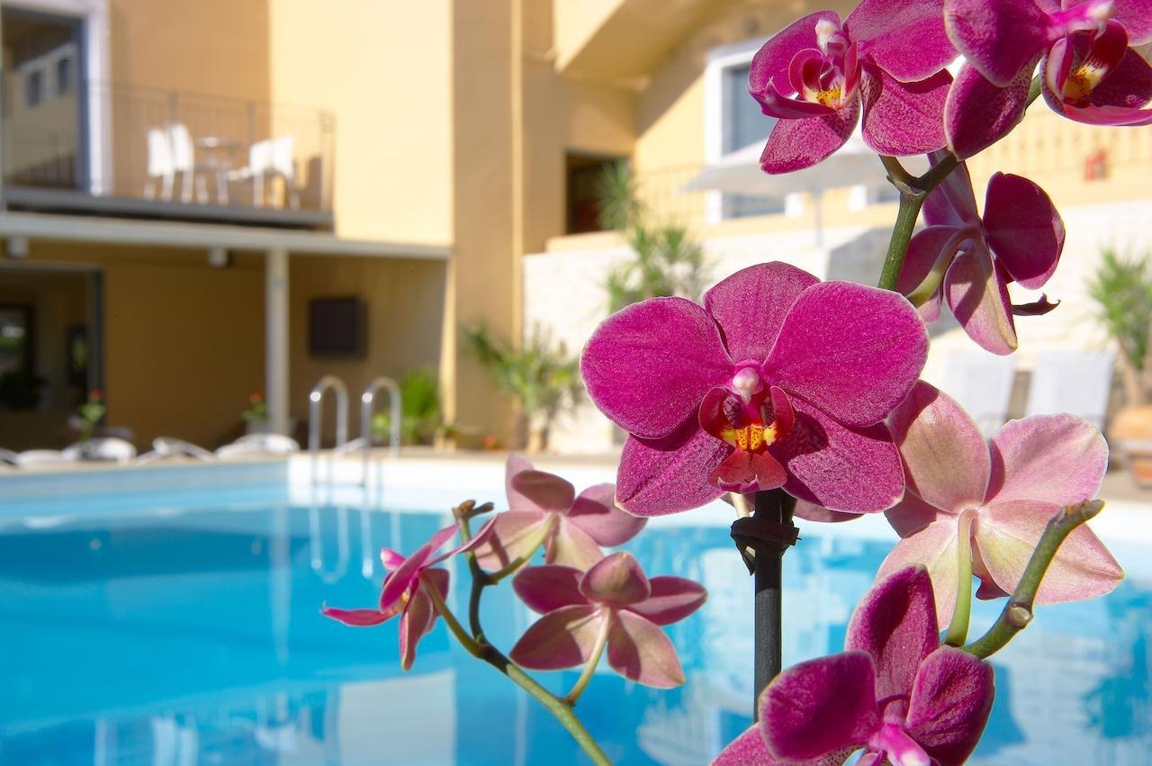 La Stella Apartments - Kreta - orchidee bij zwembad