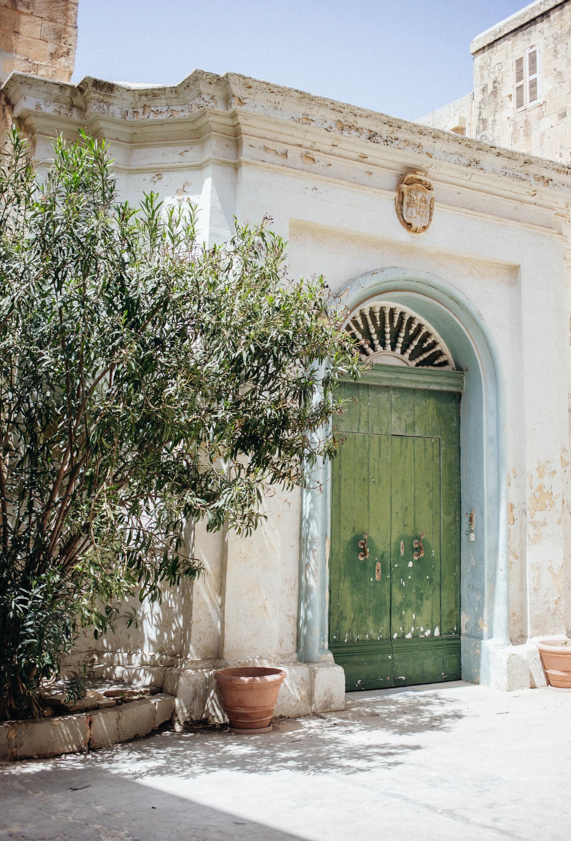 Oude groene deur op Malta met olijfboom