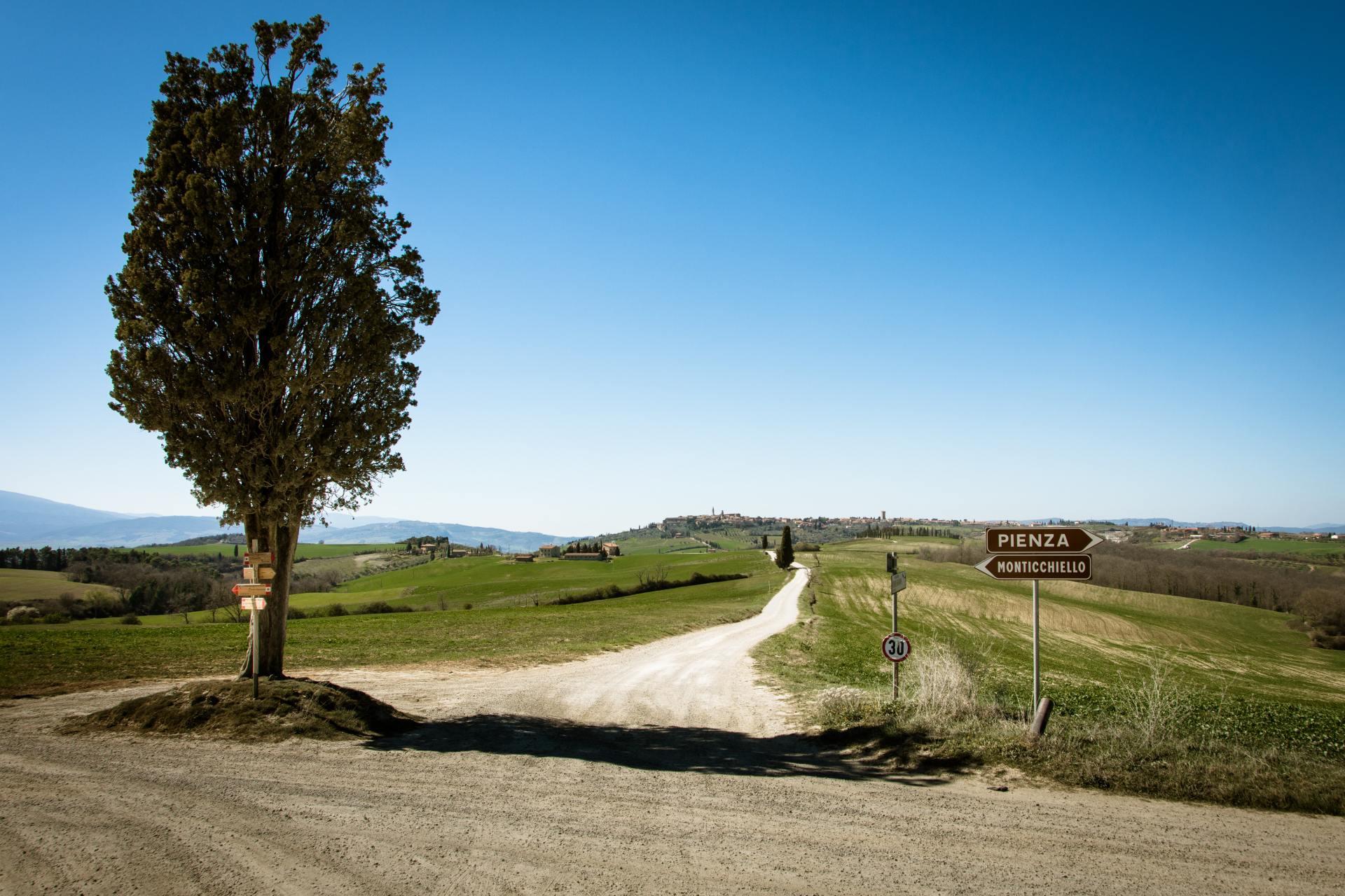 Weg met cipres in tussen Pienza en Monticchiello Toscane