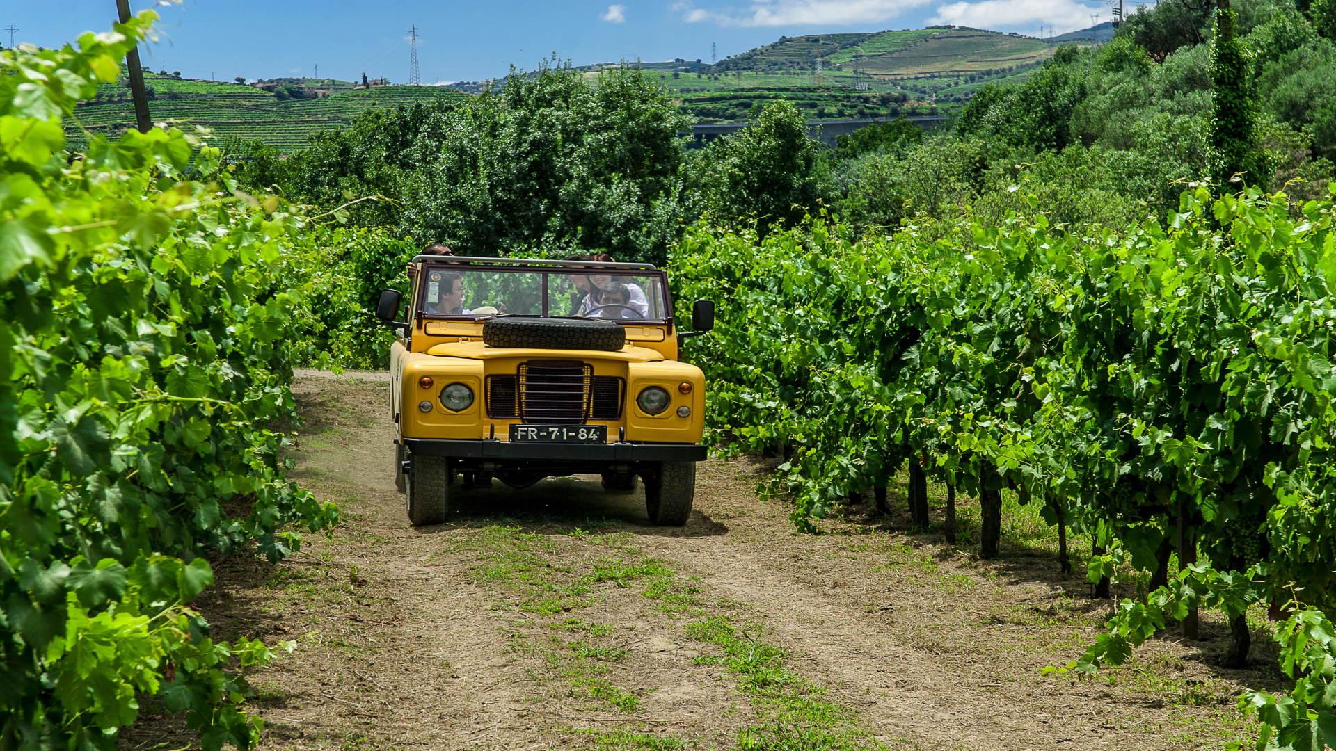 Auto door de wijngaard bij Peso da Regua, Noord Portugal