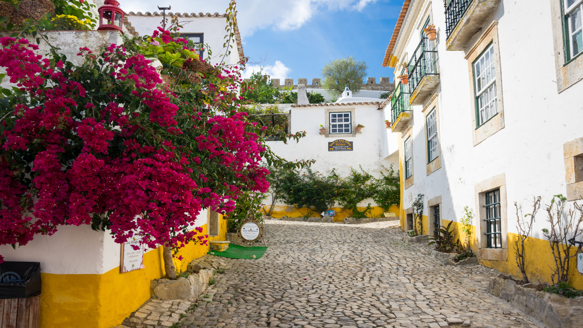 Straat in Obidos met kleurrijke bloemen, Obidos, Portugal