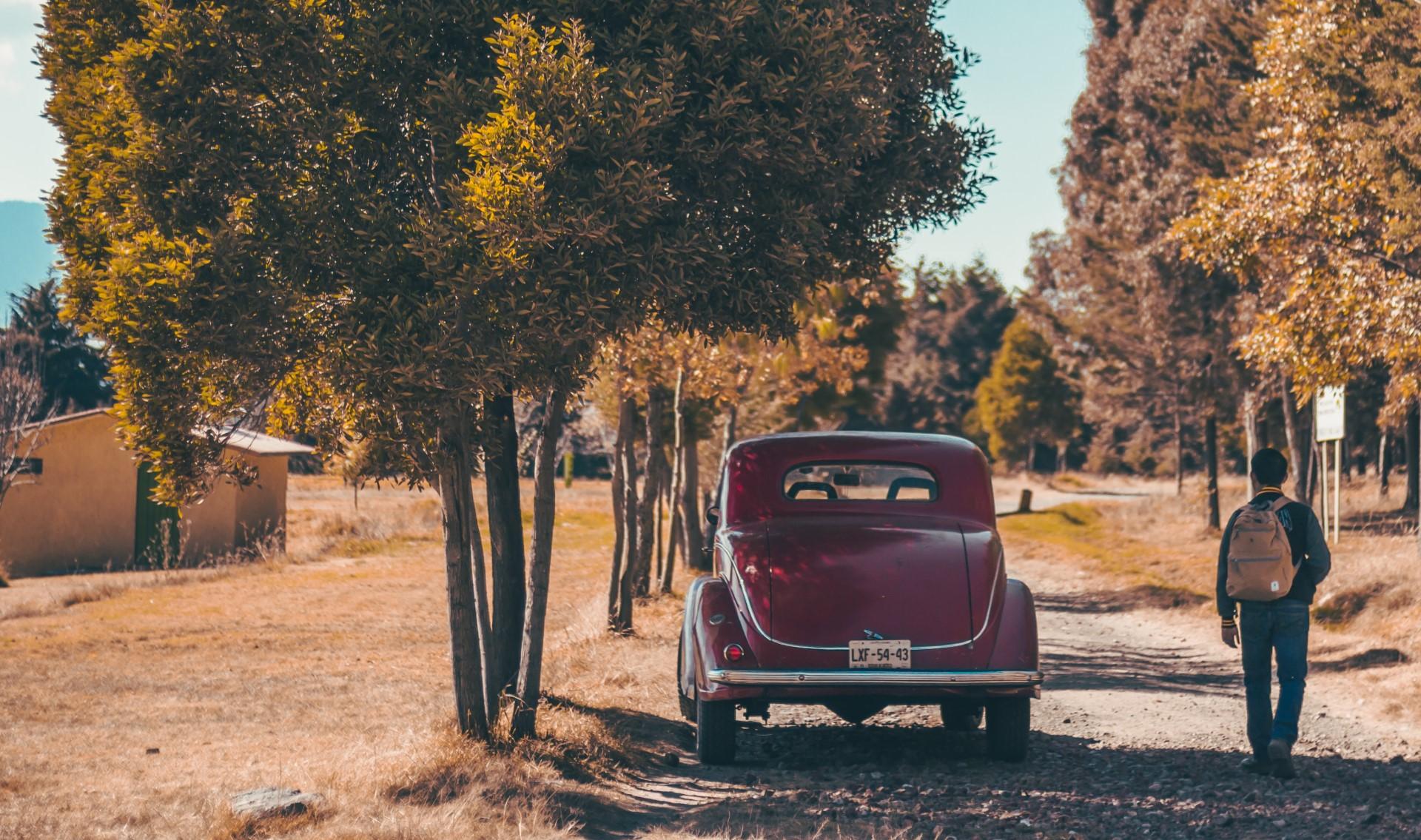 Auto Inclusief &Olives