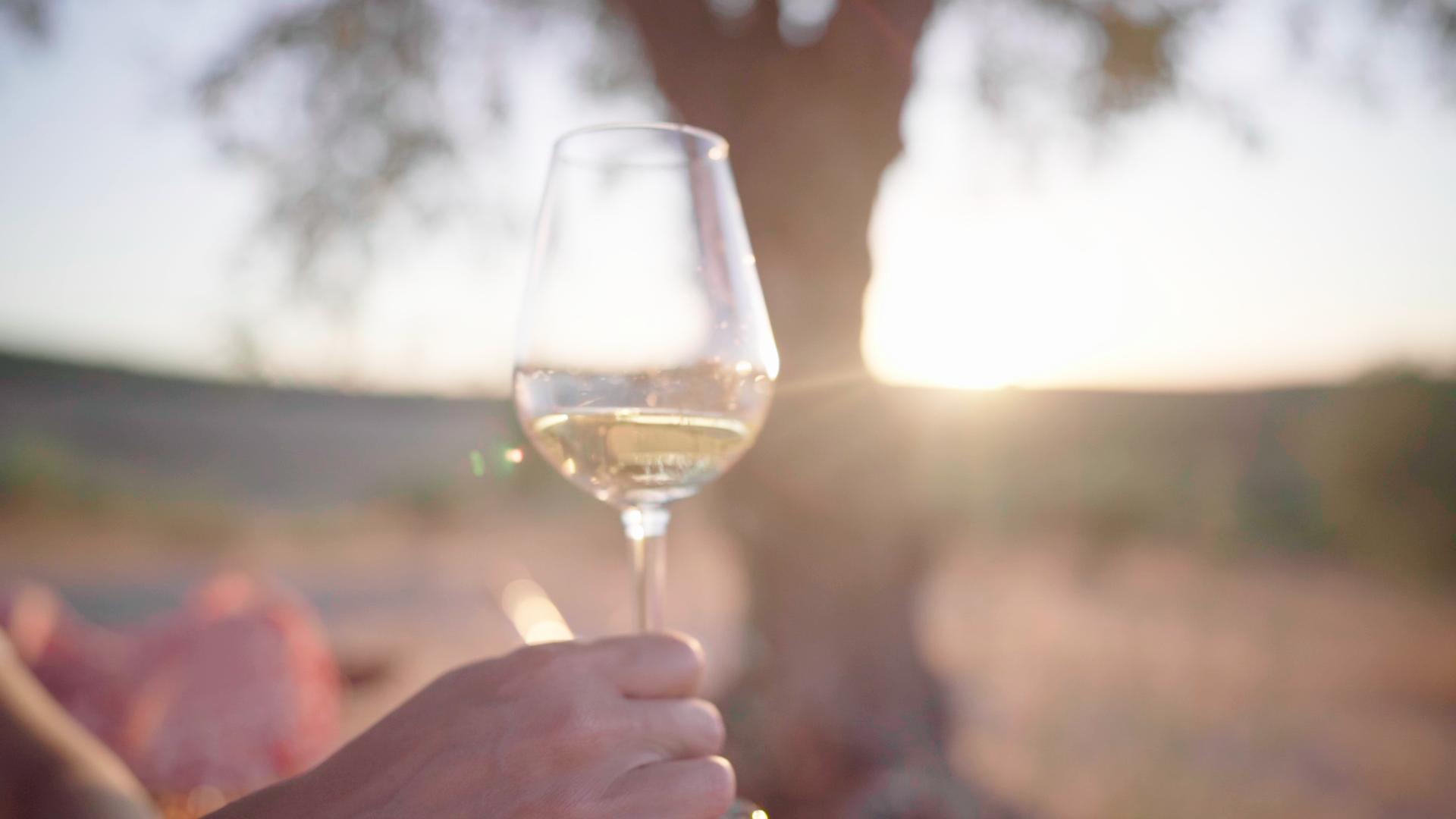 Genieten onder olijfboom met glas wijn