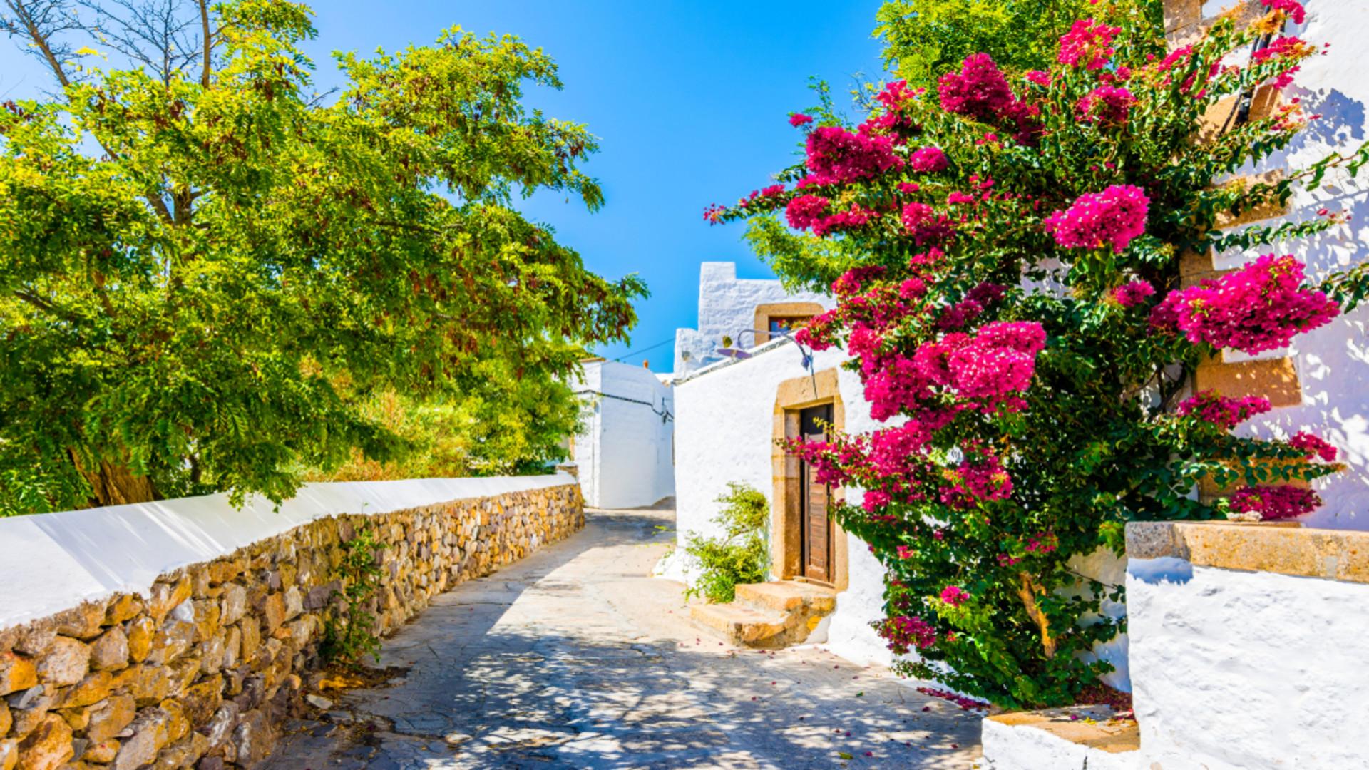 Chora, Patmos, Griekenland, blauwe lucht, roze bloemen en wit gebouw