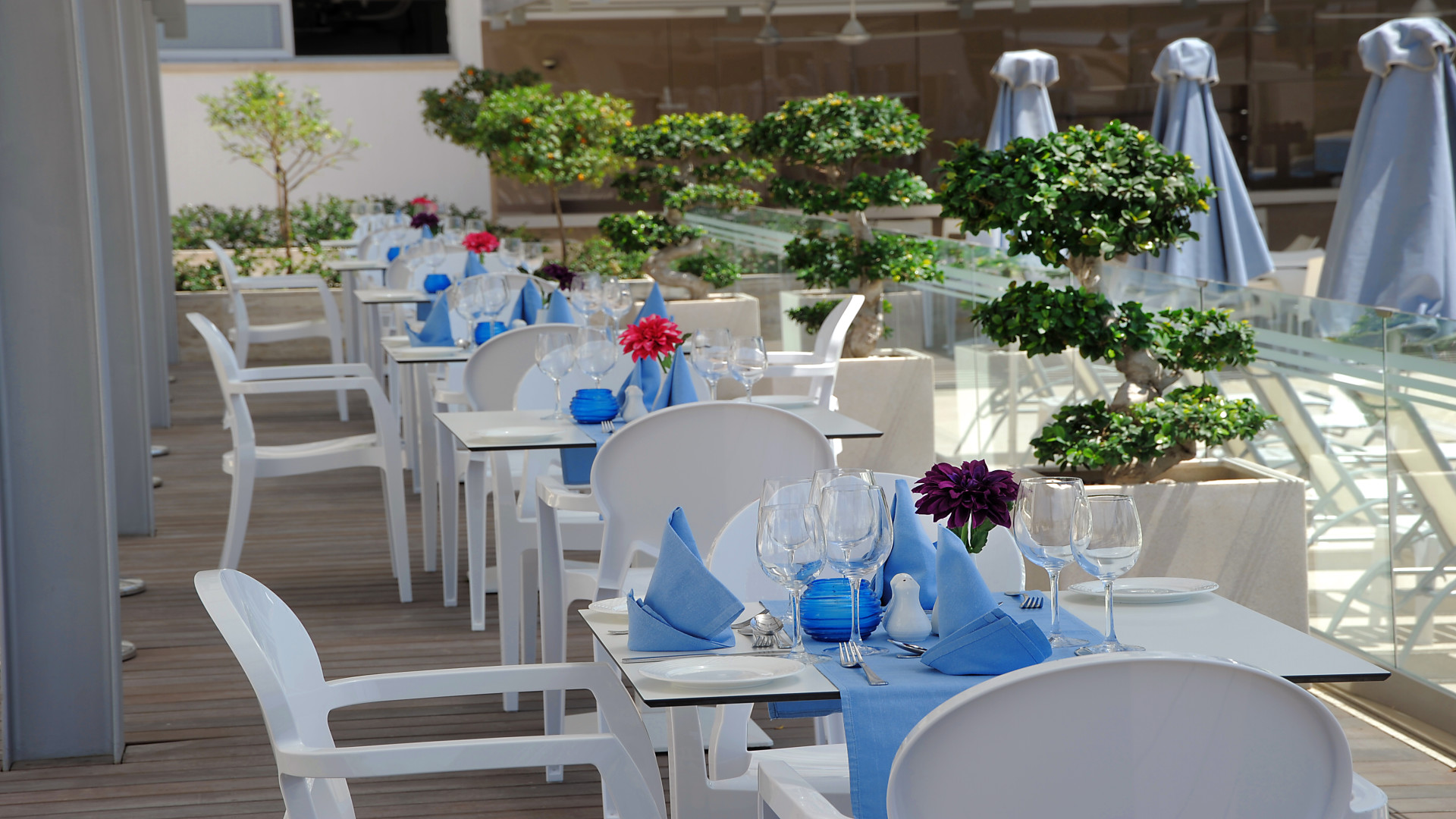 Terras à la carte restaurant Thetis, hotel Nestor, Ayia Napa, Cyprus