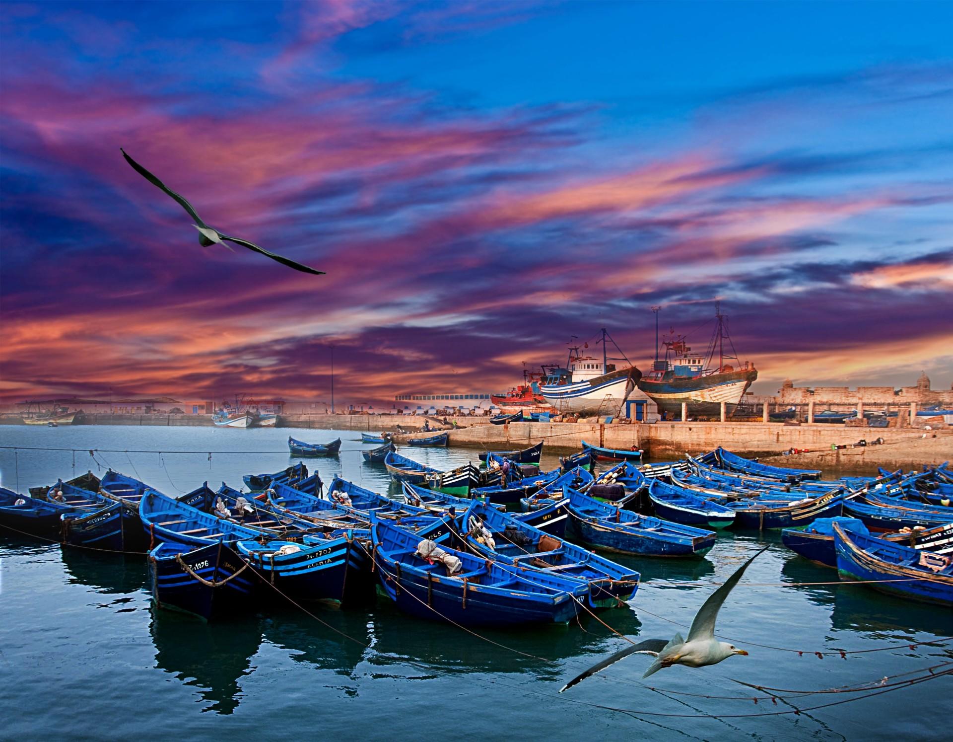 Blauwe Vissersboten met rondvliegende meeuwen erboven, Essaouira, Marokko