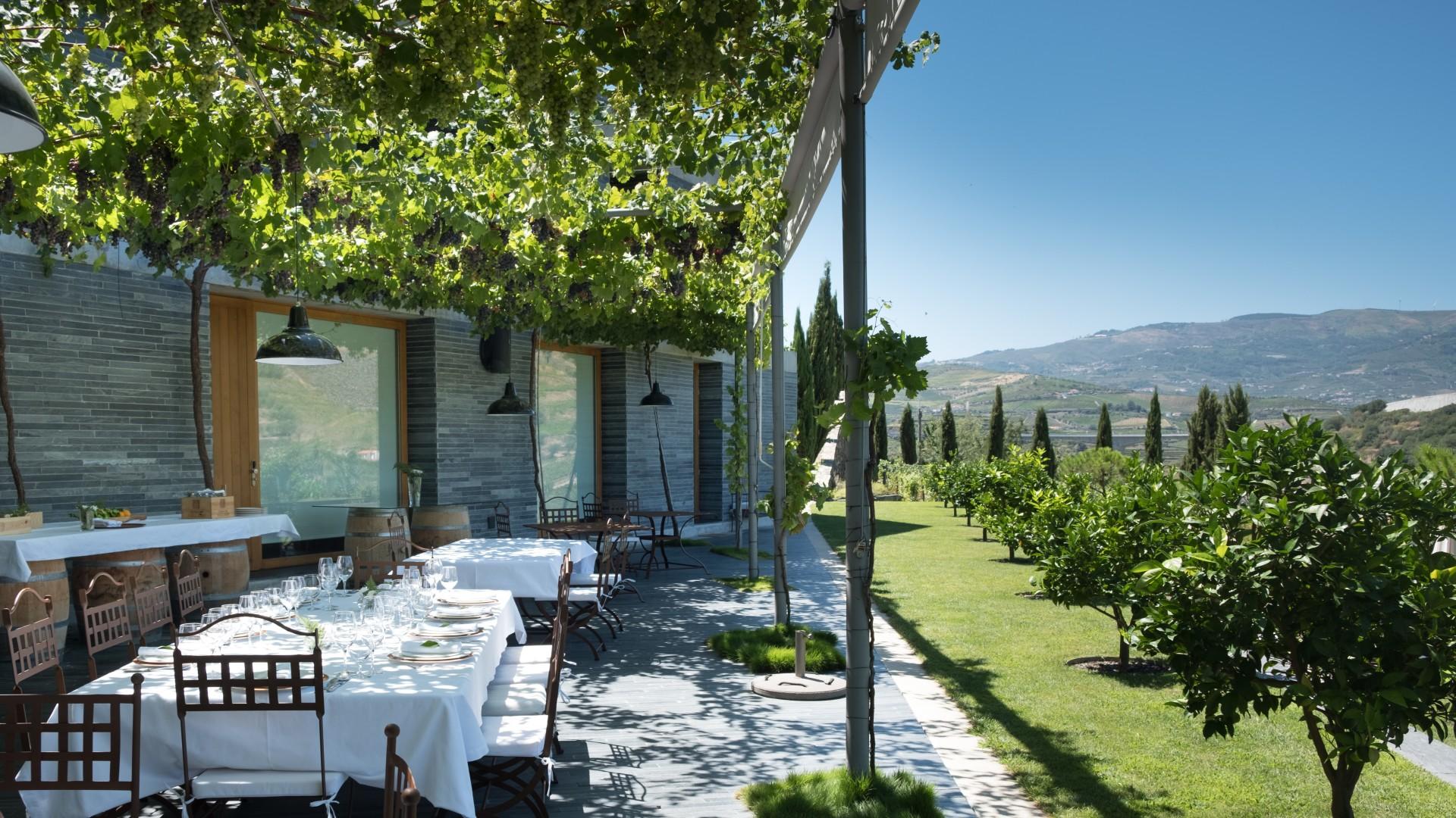 Een terras met uitzicht op een prachtige groene omgeving