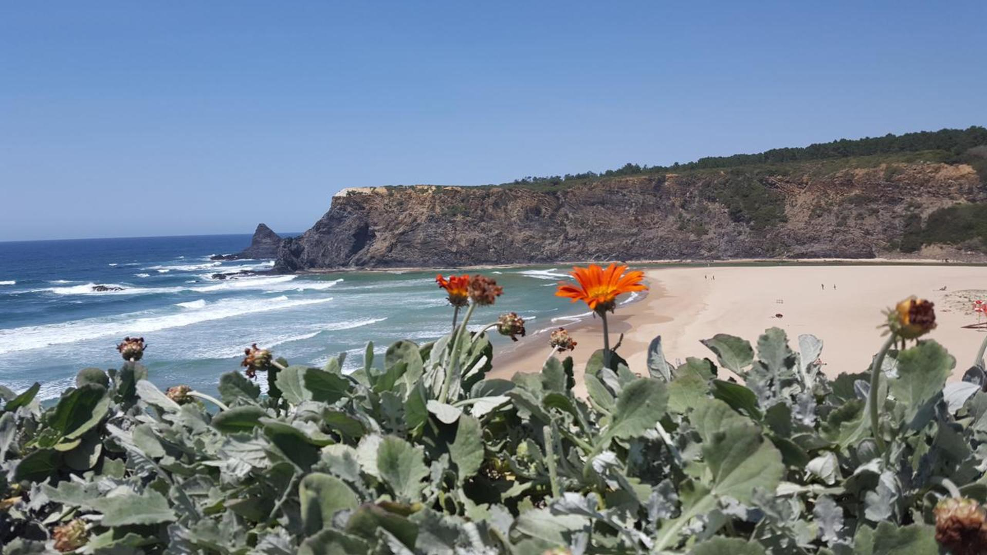 Strand, zee en kliffen, Aljezur,  Costa Vicentina, Portugal, vlakbij Vicentina Aparthotel
