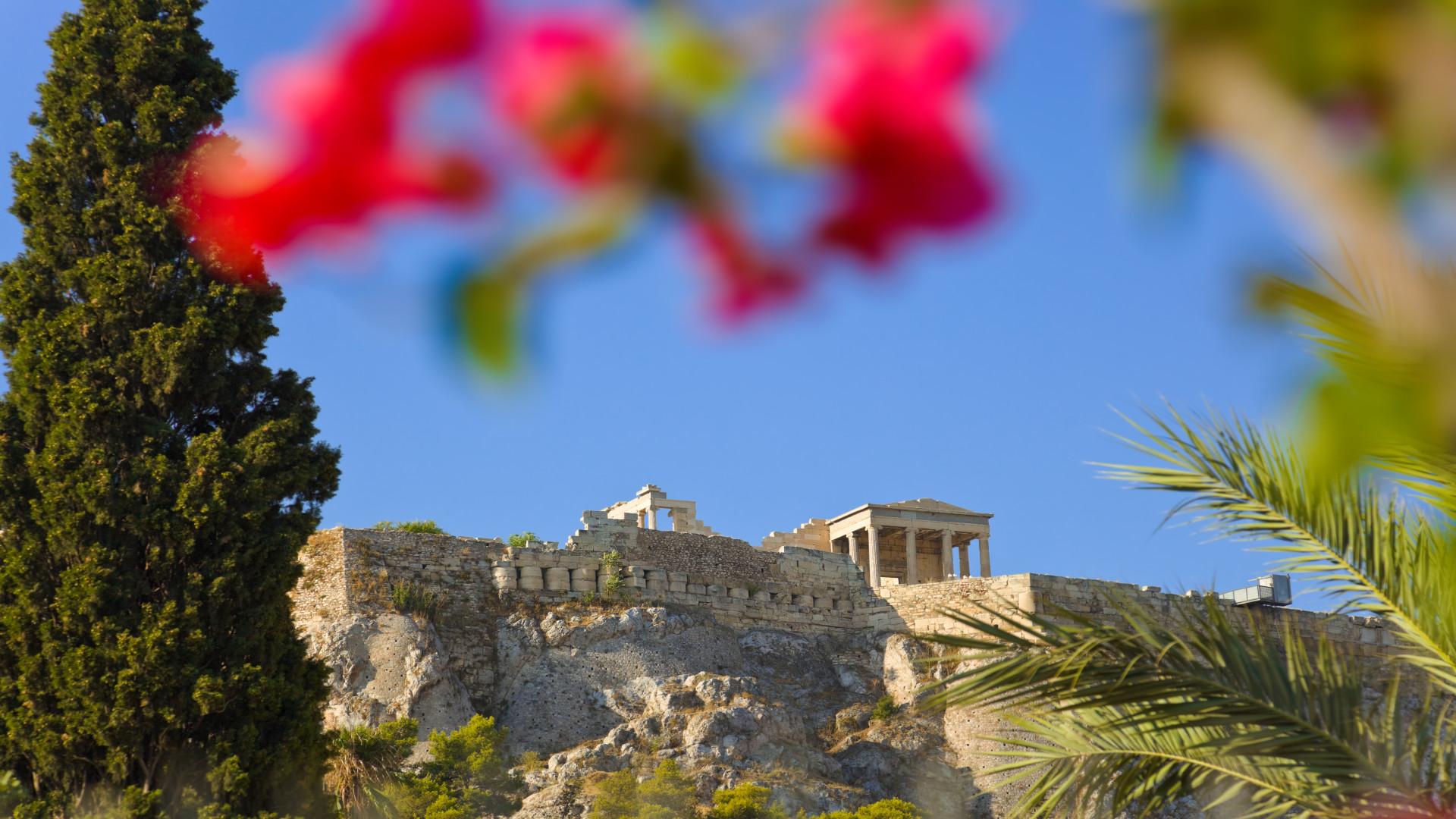Uitzicht op Acropolis, met wazige bloem op voorgrond, Athene, Griekenland