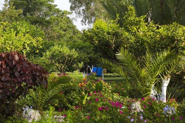 Villa Mandarine tuin - Rabat