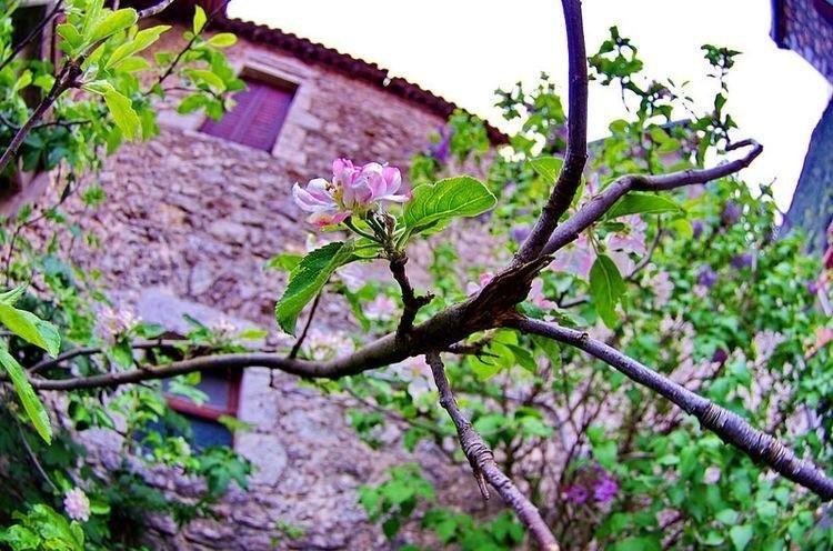 Lente in de Peloponnesos