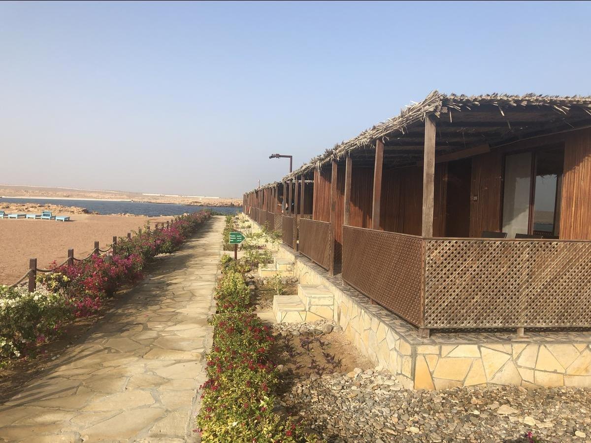 Turtle Beach Resort - Ras Al Hadd