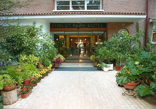 Hotel Forest Park - Platres