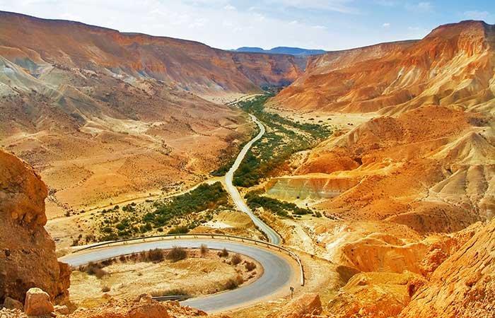 Negev Woestijn - Israël