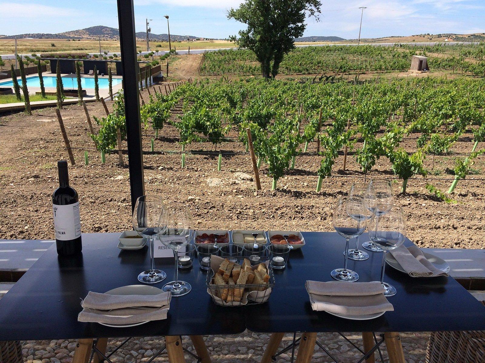 Hotel Torre de Palma Wine - Monforte