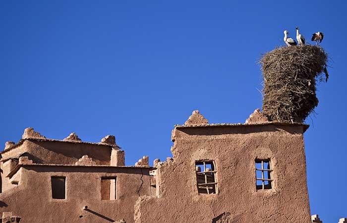 Kasbah Taourirt Ouarzazate - Marokko