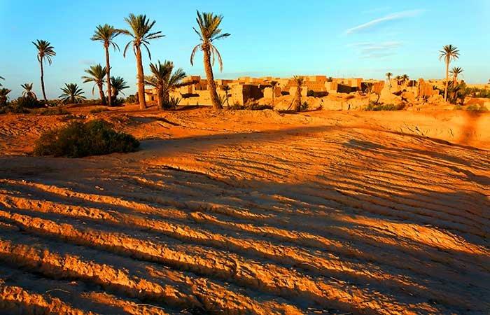 Oase in de woestijn - Marokko
