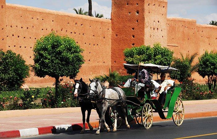 Koets Marrakech - Marokko