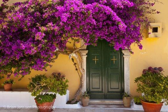 Corfu - gekleurde deur