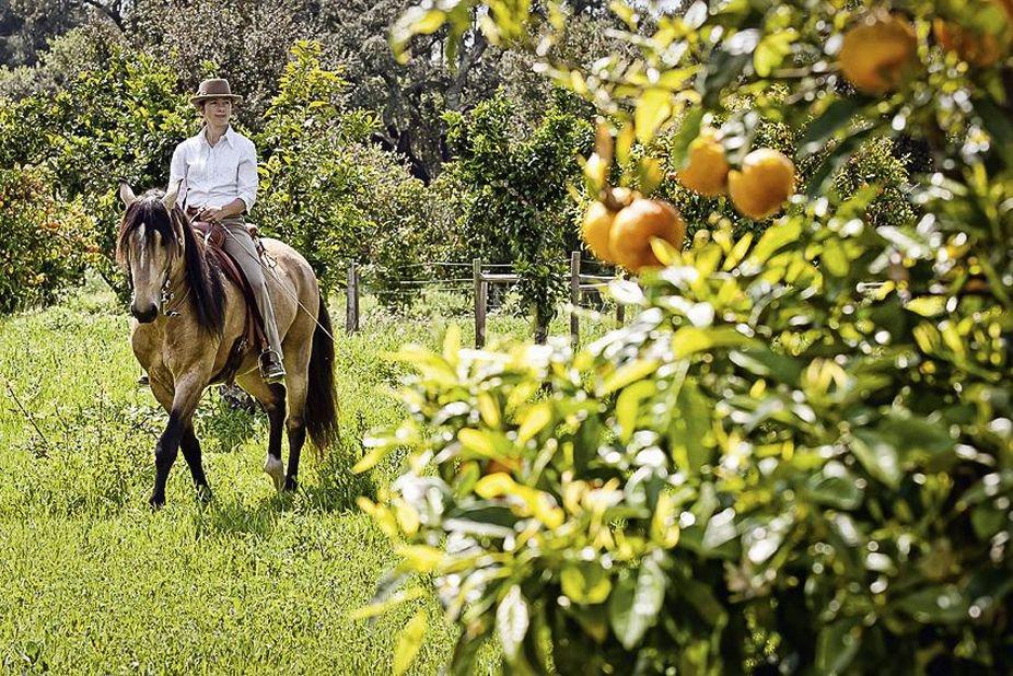 Naturarte - paardrijden in de omgeving