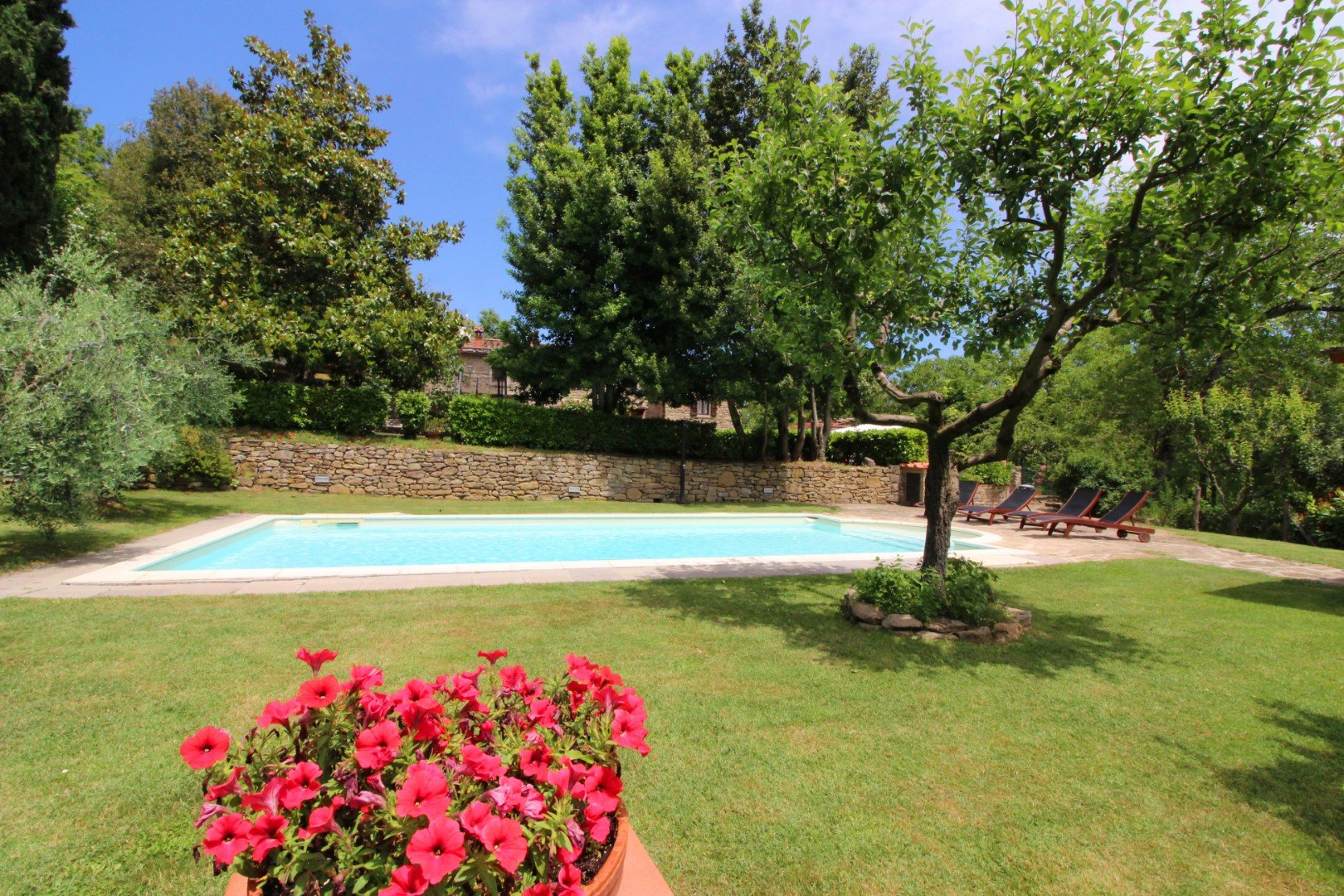 Ciabatti - zwembad met gras en bloemen
