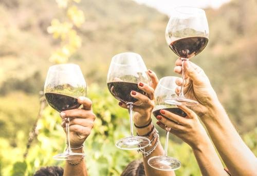 Embona - winetasting