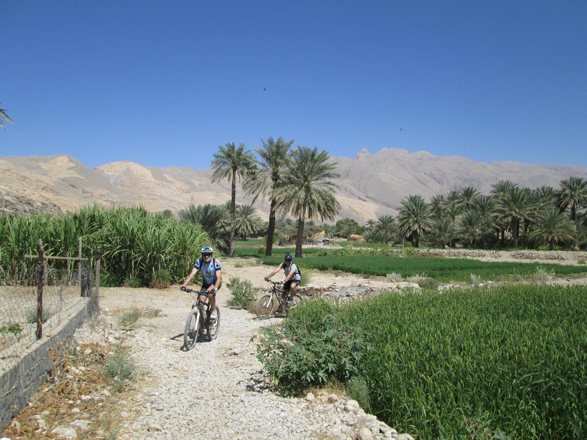 Fietsen - Oman