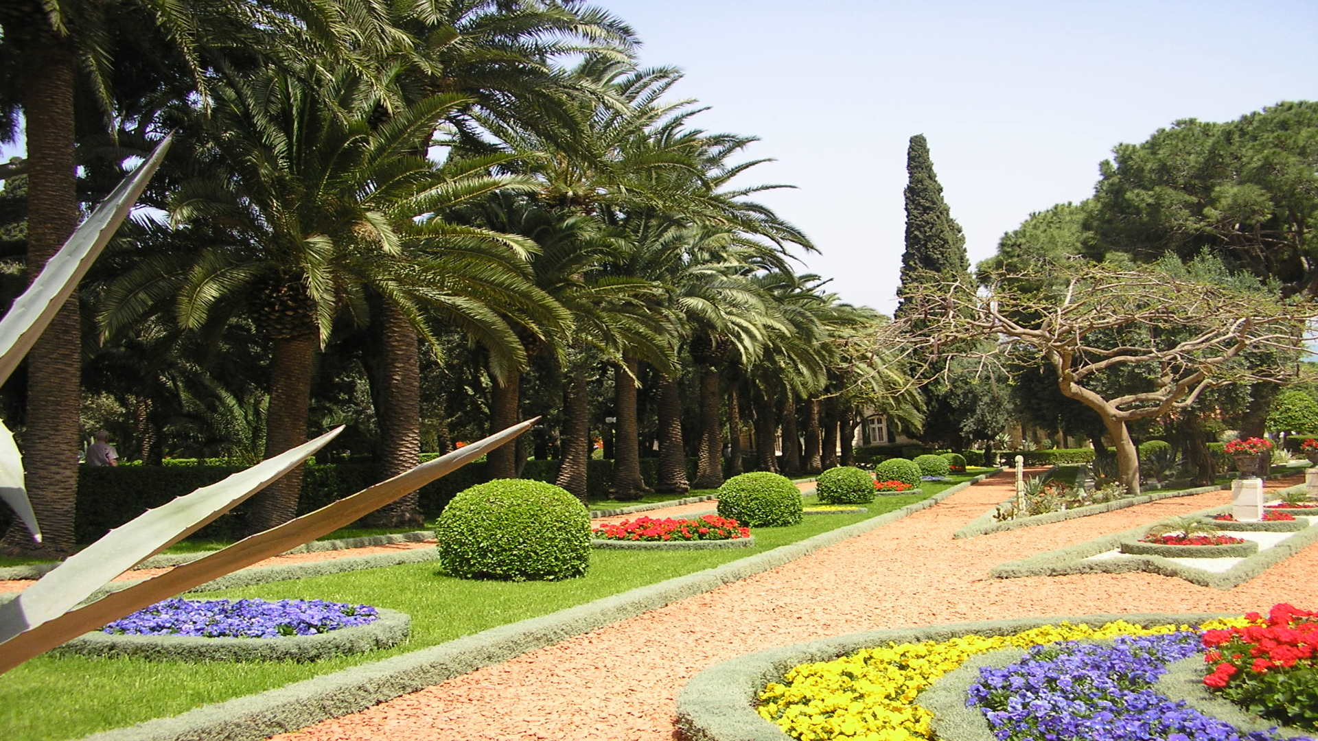 Kleurrijke bloemen bij Bahai tuinen, Haifa