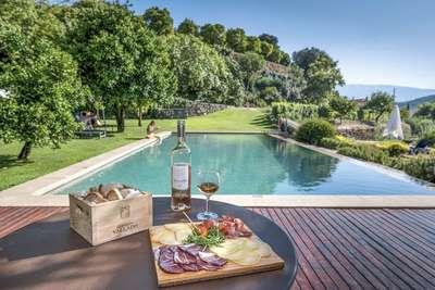 Wijn en hapjes aan het zwembad met uitzicht &Olives Travel