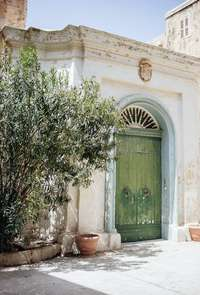 Olive tree and old door Malta