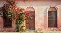 Couleur locale, steenrood huis met bloemen en oude deur