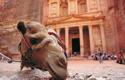Privérondreis Het beste van Jordanië