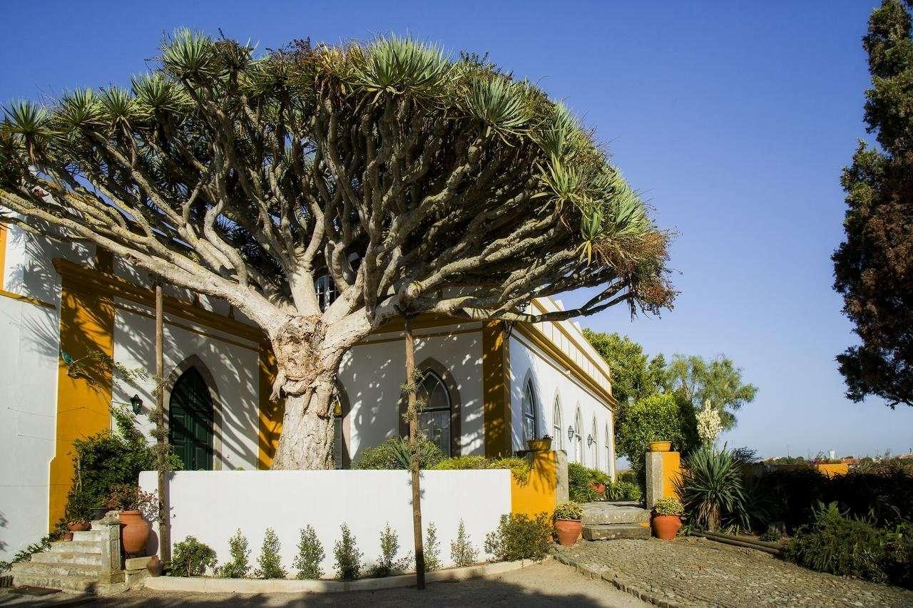 Casa do Castelo - Peniche