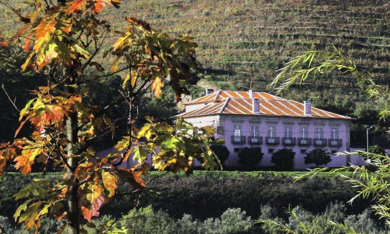 Casa dos Varais - Regua