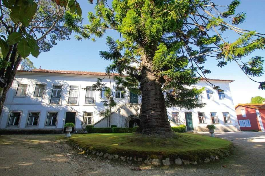 Casa de Mogofores - Anadia