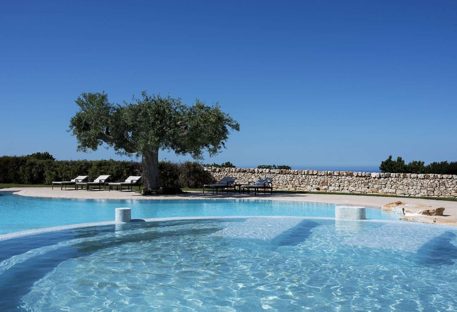 borgobianco - puglia - italie - zwembad met olijfboom.jpg