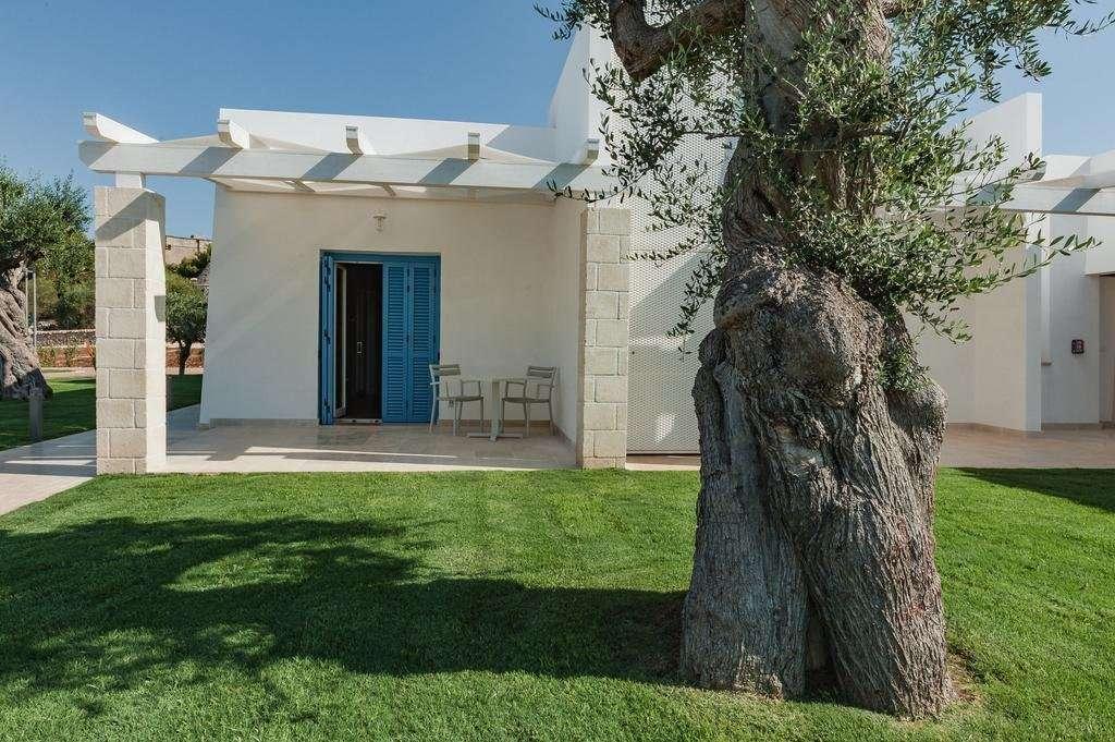 calaponte - puglia - italie - terrasje en olijfboom